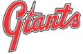 Lund Giants HC