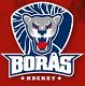Borås Hockey