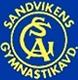 Sandvikens Gymnastikavdelning