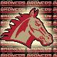 Upplands-Bro AFF Broncos